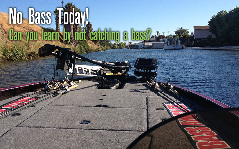 No Bass Today!