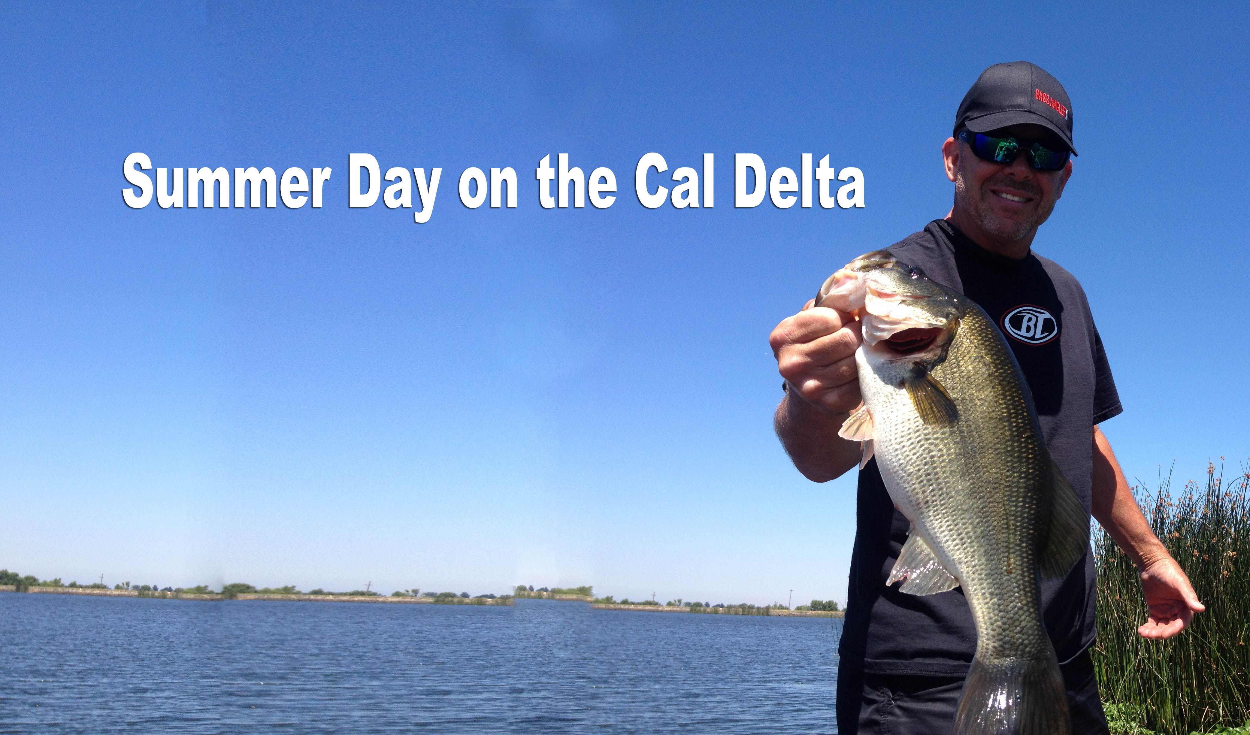 A Summer Day on the Delta