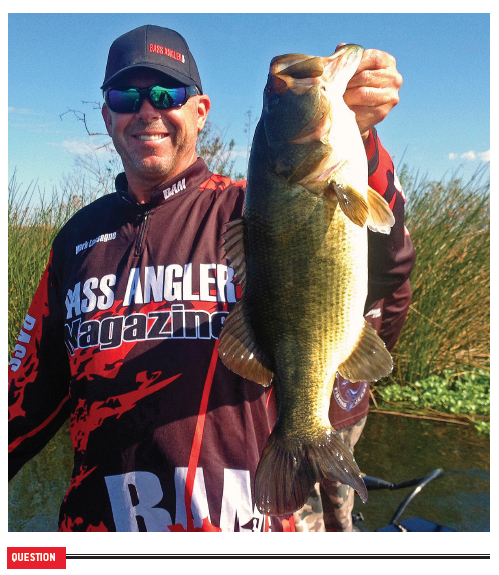 mark lassagne bass fishing